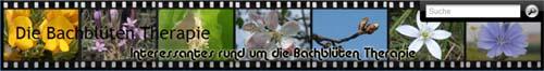 Die Bachblüten Therapie